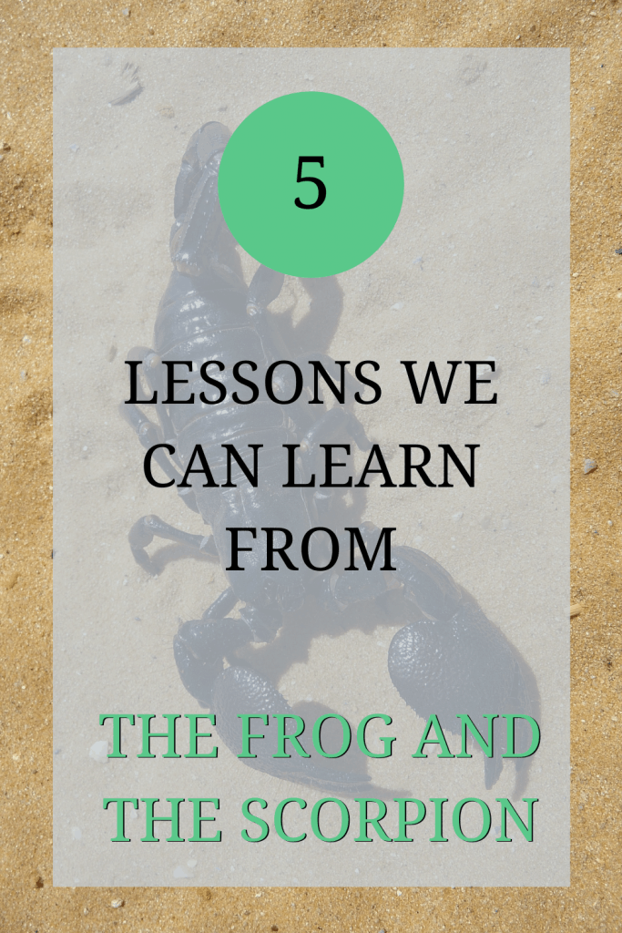 The image shows a scorpion on some sand. Over the image the text reads: '5 lessons we can learn from the frog and the scorpion'.