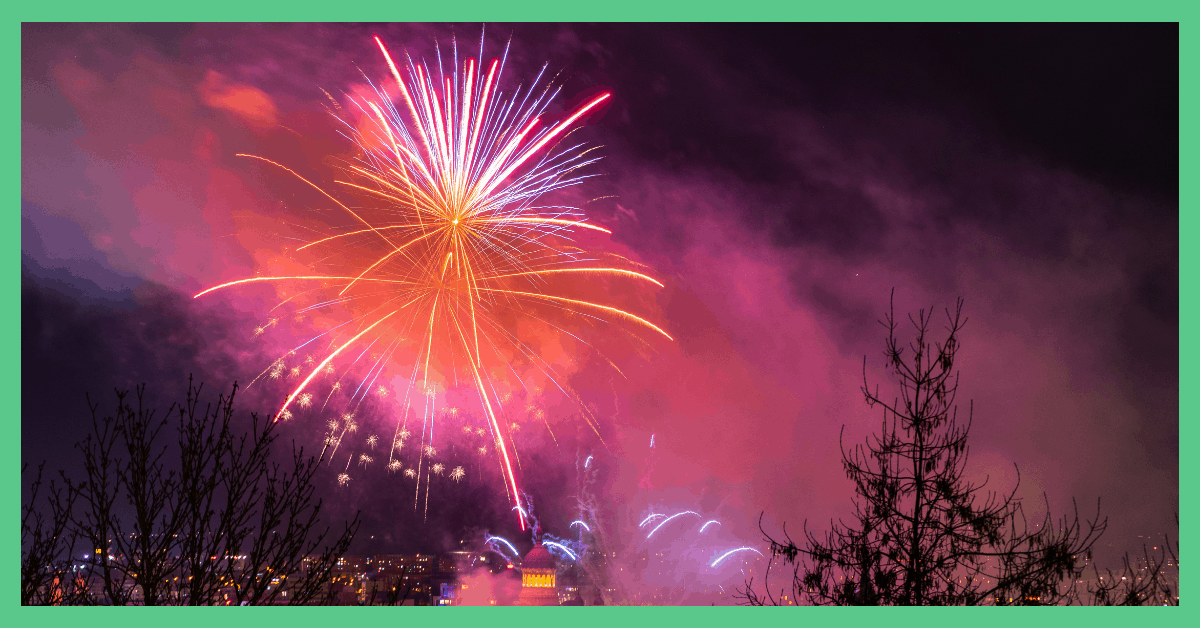 Pink fireworks exploding against a pitch black sky.