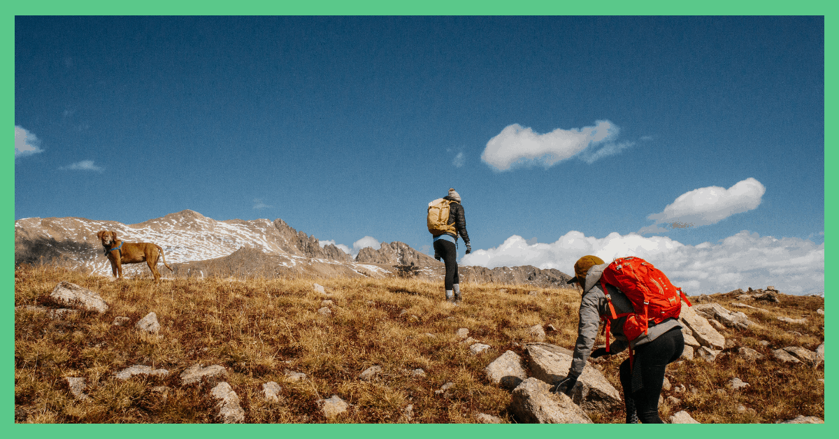 The image shows two people and a dog on a hike. The image has a green border.