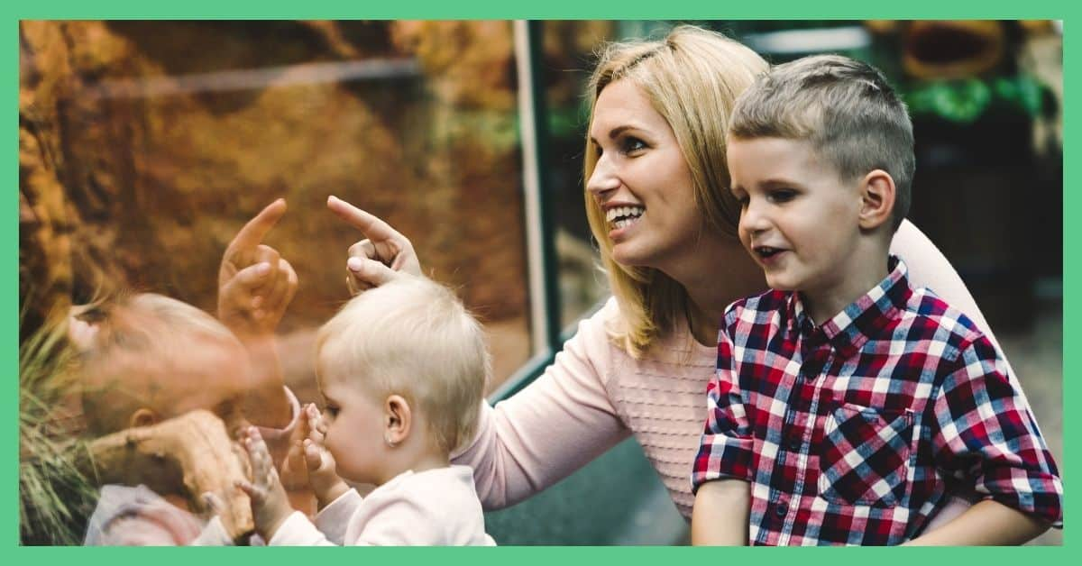 Chester Zoo tickets - would membership be better