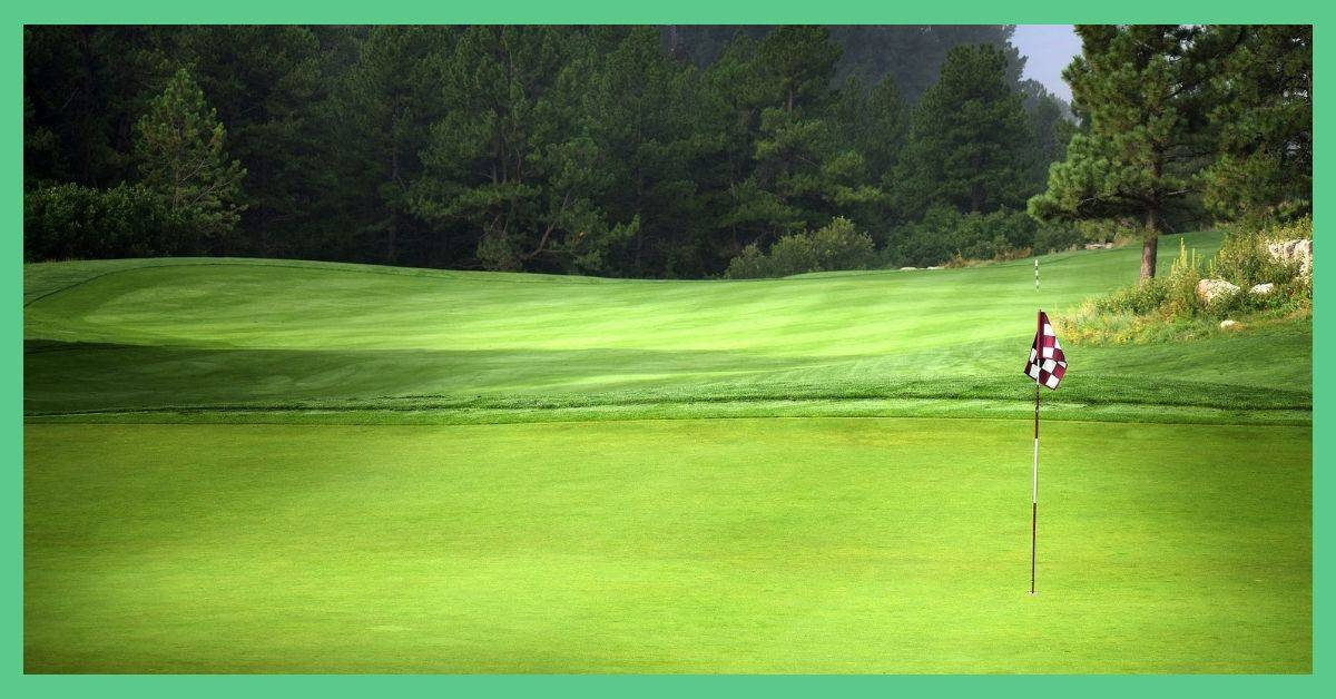 The image shows a golf course.